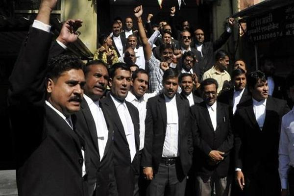 mp bar council elections today 14 candidates of bhopal in fray