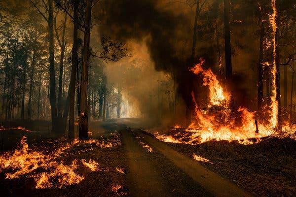 hot winds again increase fire risk in australia
