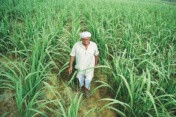 modi government can change the expectations of farmers