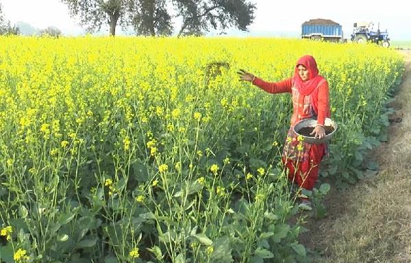 female farmer set an example by farming at low cost
