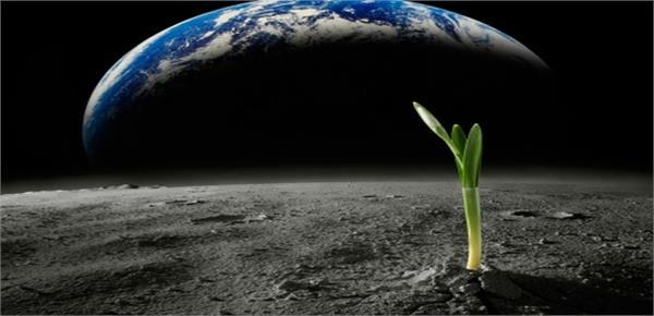oxizan cambridge university astronaut astrophysical letters usa