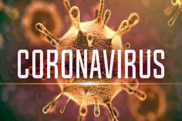 businessmen s great loss due to  coronavirus