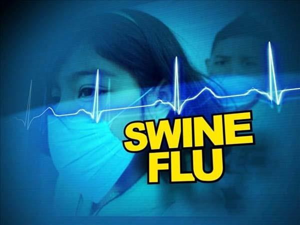 first case of swine flu in kangra