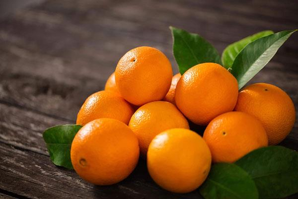 nagpur to become orange cluster to increase orange exports