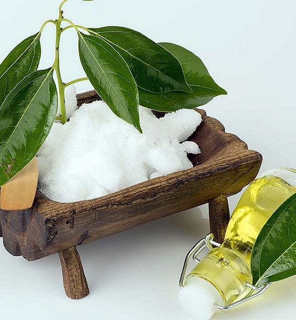 त्वचा से लेकर सेहत के लिए फायदेमंद, जानिए कपूर के 9 बेमिसाल फायदे