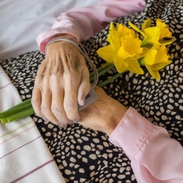 dutch with a death wish around 10 000 over 55s