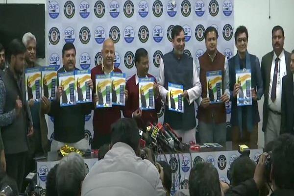 aam aadmi party manifesto delhi assembly election