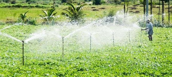 irrigation changed the picture of this district of haryana