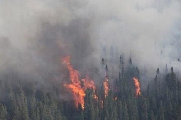 mankot sector caught fire forests landmines burst people panic