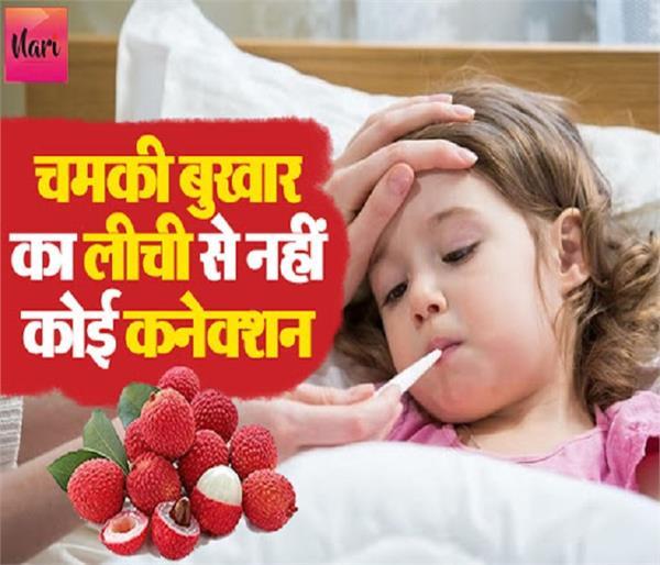 चमकी बुखार का लीची से नहीं कोई कनेक्शन: रिसर्च
