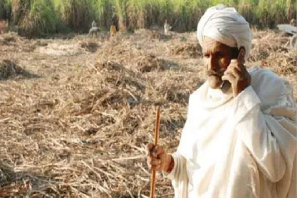 up farmers trouble increased sugar mills issued new decree