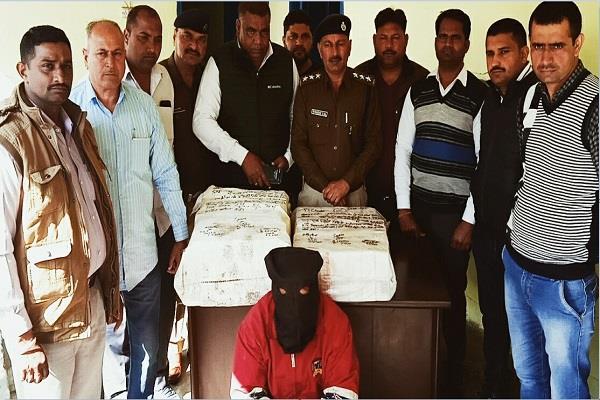 tightening screws on drugs smugglers 1325 kg sawdust