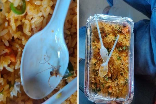 spider found in biryani of indian railways