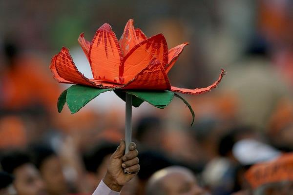 history of bjp will be taught in university of indonesia