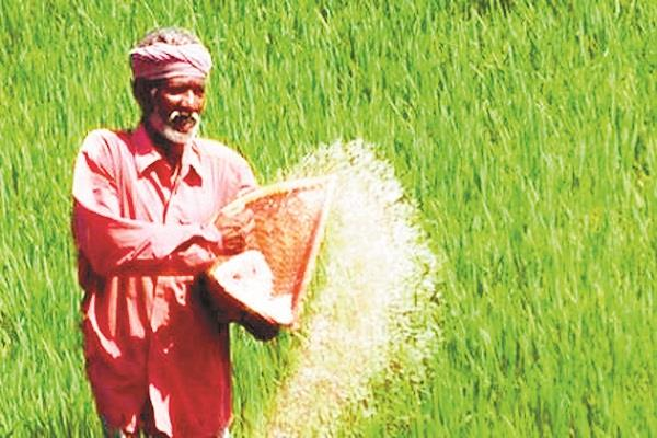यूरिया के उपयोग को कम करने का 'संकल्प' लें किसान - farmers take resolve to  reduce the use of urea