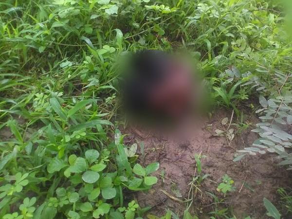 काँगड़ा के धर्मशाला में टैक्सी ड्राइवर की सिर कटी लाश मिलने से मचा हड़कंप, मौत से पहले की थी जंगल में पार्टी