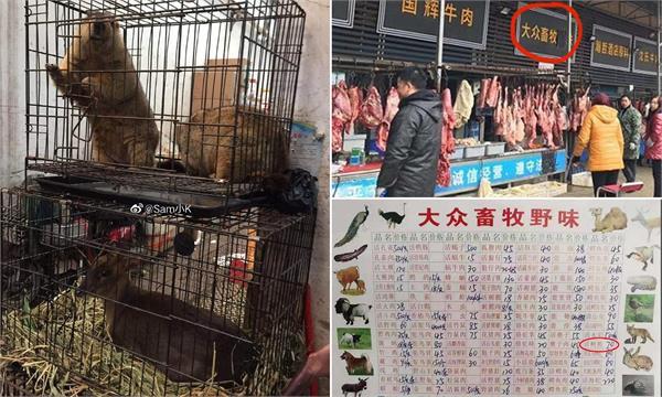 china celebrate victory over coronavirus bats again sold