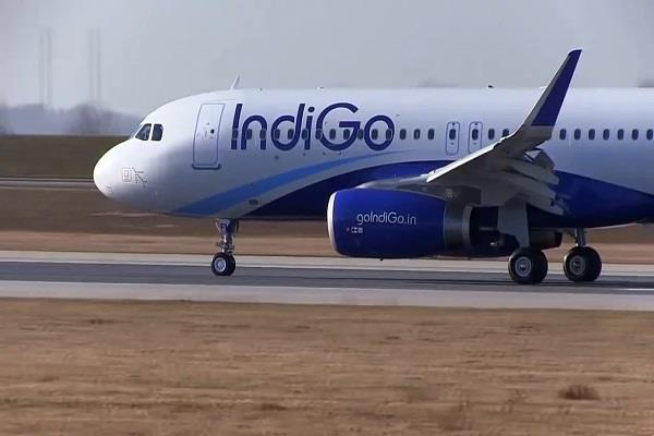 indigo manager dies of heart attack returned from abroad