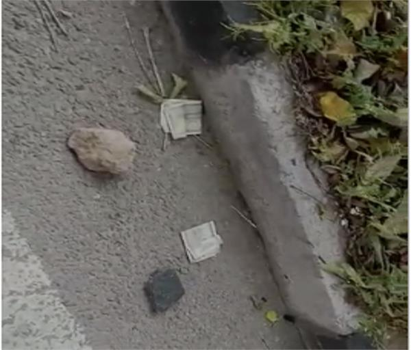 money found scattered on the road in mohali