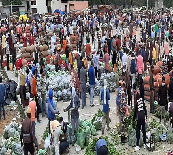 nearly 1800 retail vegetable vendors grew in the city in 2 weeks
