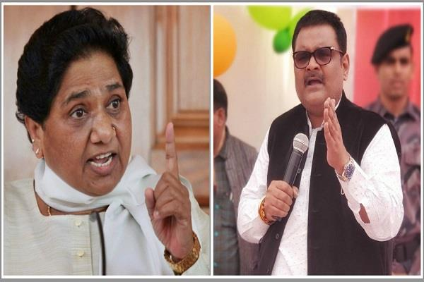 mayawati angry beating of tehsildar said  strict action against mp
