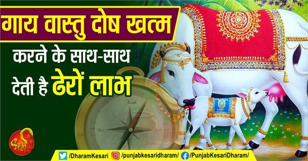 gau hatya in hindi