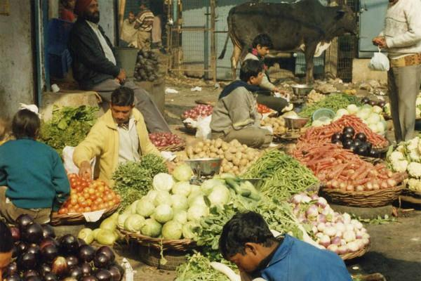 yogi government s strict instructions vegetable prices controlled