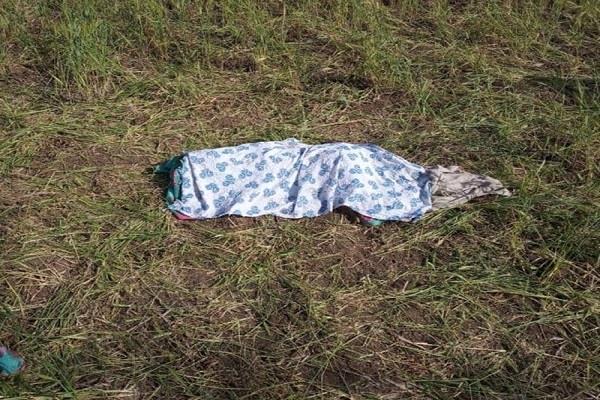 tragic accident 3 elephants kill wild elephants border dindori distt