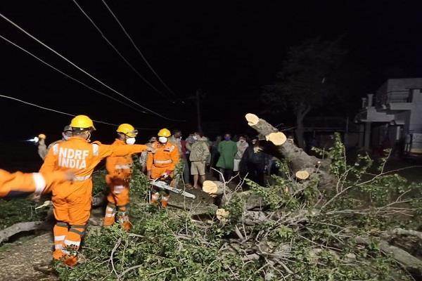 p 12 people killed in cyclone hurricane amfan in bengal and odisha