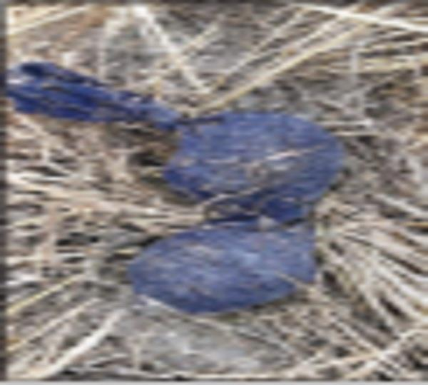 bsf recovered 10 crore heroin