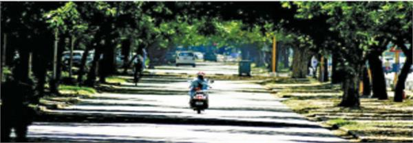 friday was the hottest day of the season in chandigarh