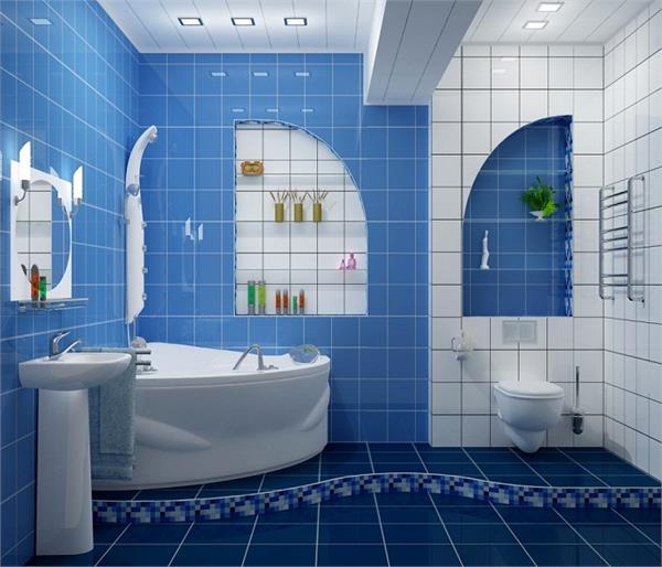 बाथरूम में रखी इस रंग की बाल्टी बदल देगी किस्मत!