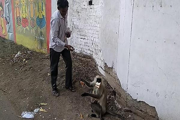 this person of narsinghpur became a symbol of goodness and goodness