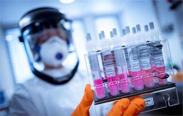 corona virus california company claims it has discovered an antibody