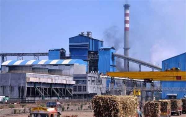 good news muzaffarnagar s 8 sugar mills produce record sugar