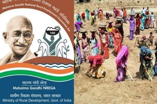 mnrega job cards activated 8t distts millions get employment