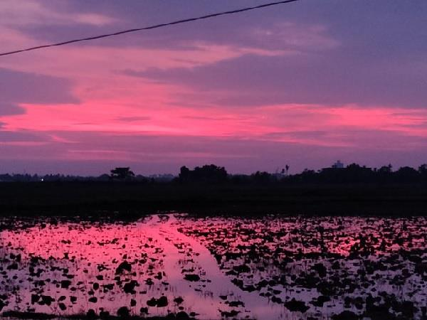 Odisha: चक्रवर्ती तूफान के बाद दिखा अलग ही नजारा, आसमान हुआ गुलाबी