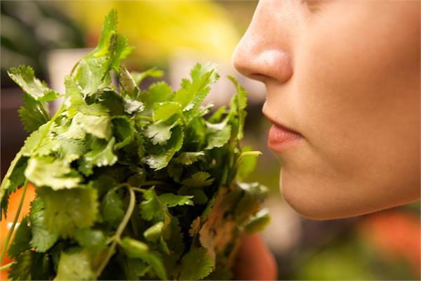 loss of smell taste early symptom of covid 19 report