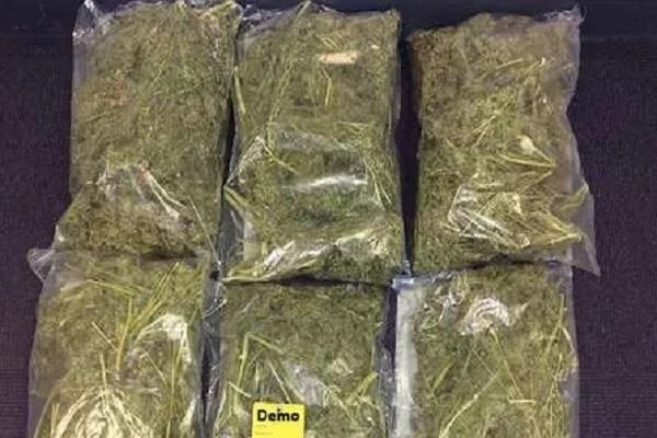 hemp smuggling continues in bahraich amid corona crisis
