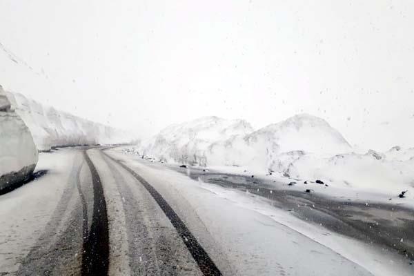 snowfall in rohtang pass