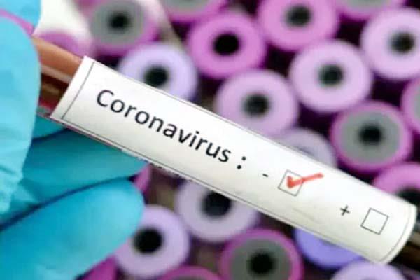 corona sample report negative