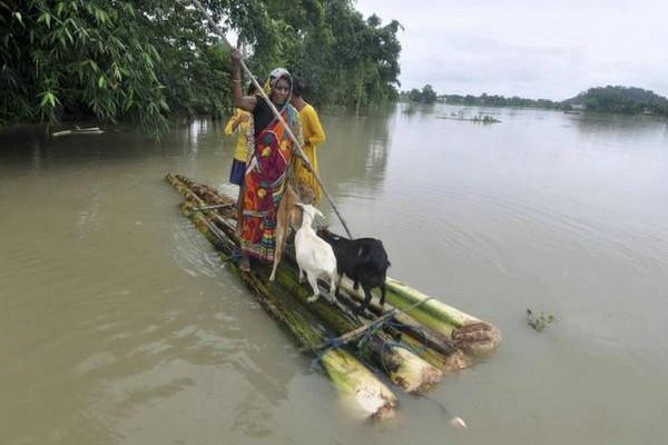 assam flood situation worsens 16 deaths so far
