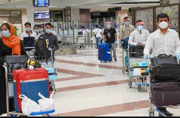 210 out of 4000 punjabi youth trapped in dubai returned to their homeland