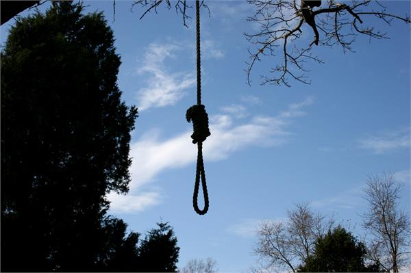 suicide in chattbir zoo forest