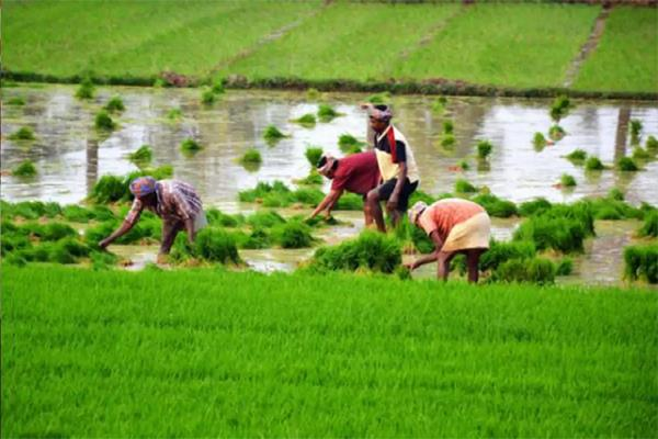discount on interest on crop loans extended till 31 august
