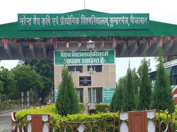 fir against former vice chancellor of narendra dev agricultural university
