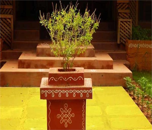 तुलसी से जुड़े ये चमत्कारिक वास्तु टिप्स, घर में बनी रहेगी सुख-शांति