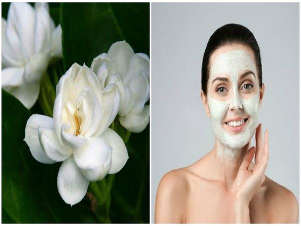 होममेड फेस पैक: चेहरे की खोई चमक वापिस लाएंगे मोगरे के फूल