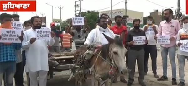 against the prices of petrol diesel the donkey got angry