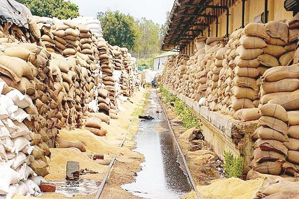 the decision of free ration is right but not enough